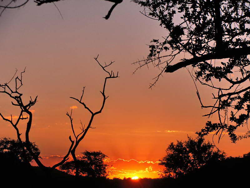 Pilanesberg NP, maart 2016